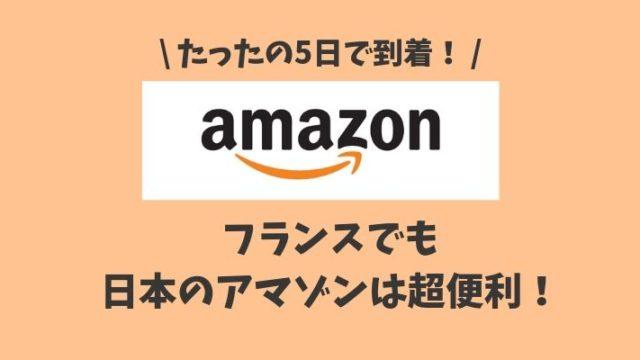 フランスで日本のアマゾンを利用したら5日で届いた