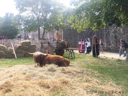 プロヴァン中世祭りの牛