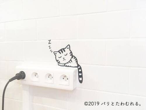 NEKOTEA店内の猫 コンセント上
