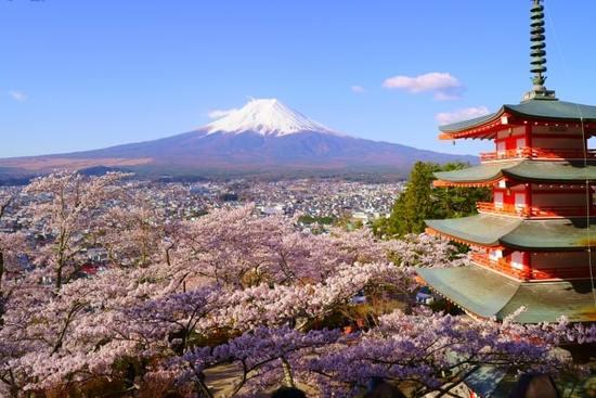 日本の一時帰国するなら