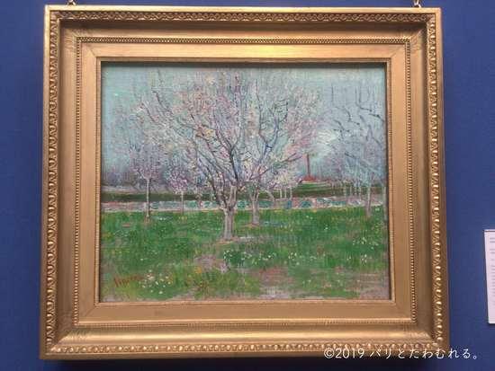 フィンセント・ファン・ゴッホ「花咲く果樹園」